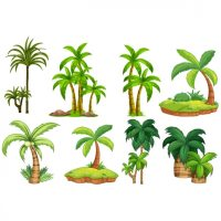 Palm trees designs collection Vector | Premium Download