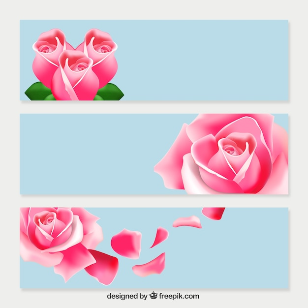 Pink Roses Banners Vector Free Download