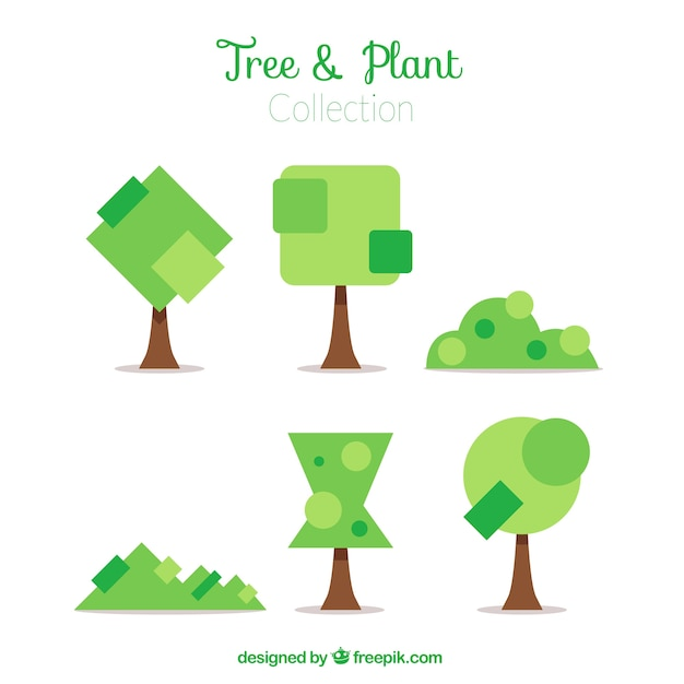 shrub graphic symbols diagram the human brain in photographs and diagrams shrubs trees of geometric shapes background vector free download demo 24