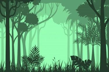 Premium Vector Silhouette forest background