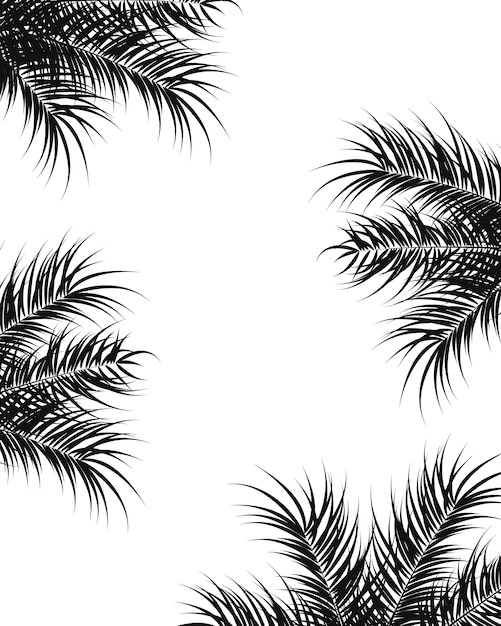 Tropical design with black palm leaves and plants on white