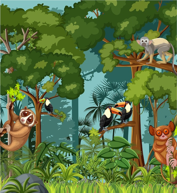In a tropical rainforest biome, some decomposers are insects, bacteria and fungi that live on the forest floor. Free Tropical Rainforest Vectors 3 000 Images In Ai Eps Format