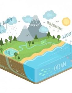 Water cycle diagram free vector also download rh freepik