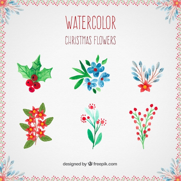 Watercolor Christmas Flowers Collection Vector Free Download