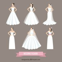 Wedding fashion Vector