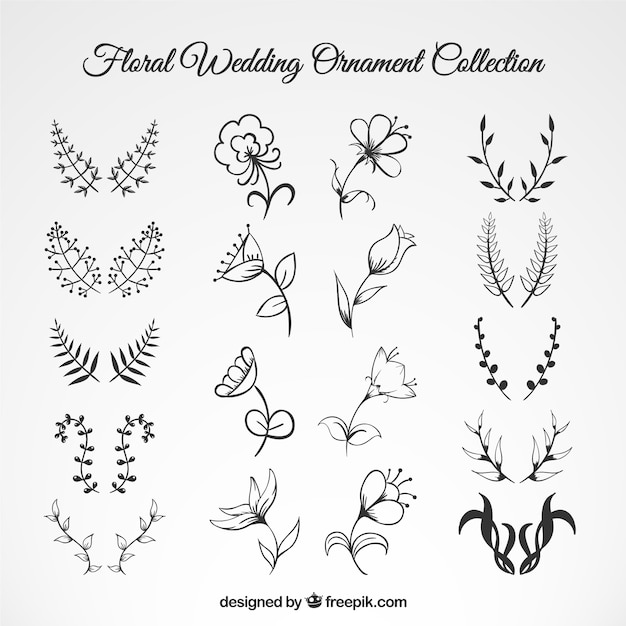 Wedding floral ornament collection Vector  Free Download