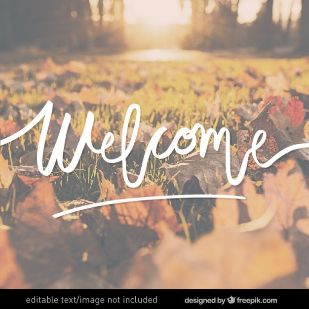 Welcome Vectors Photos and PSD files  Free Download