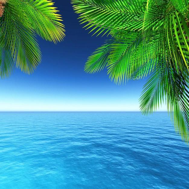 Ile Tropicale  Vecteurs et Photos gratuites