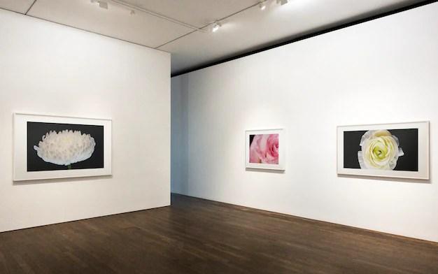 Colección de piezas de arte en una pared. PSD gratuito