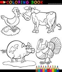 Descargar Libro Para Colorear Para Mi Premium Animales