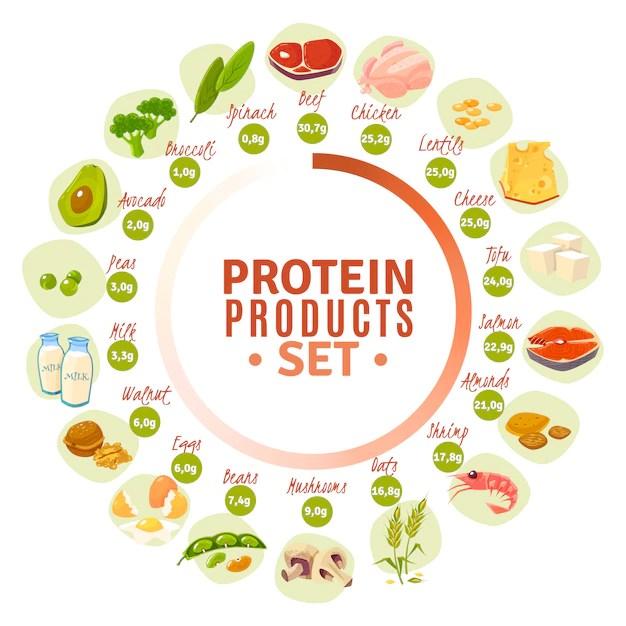 proteínas nos alimentos