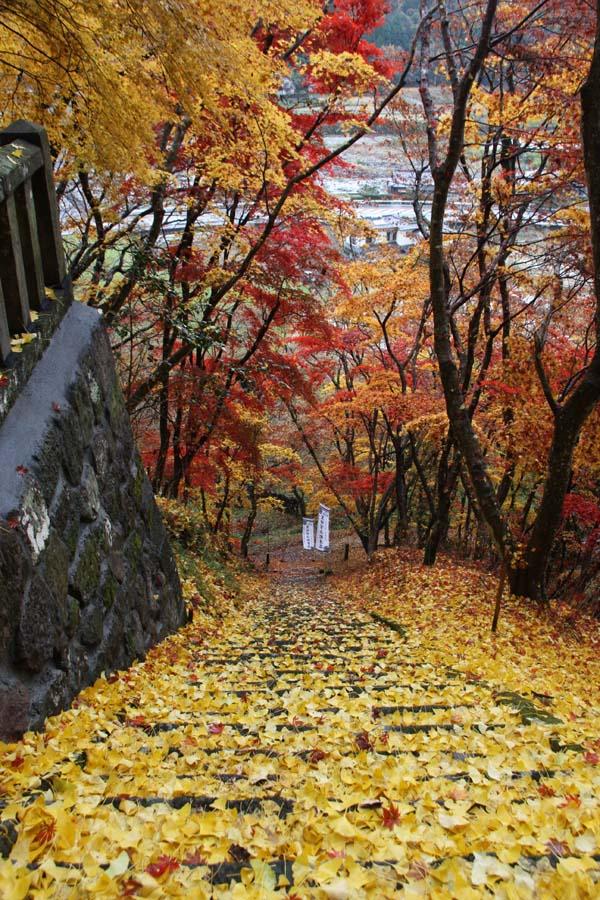 九州一ヤバい紅葉名所「耶馬溪」で、押さえるべき絶景スポット4│観光・旅行ガイド - ぐるたび