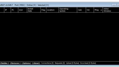 CobianRAT v1.0.40.7+Source