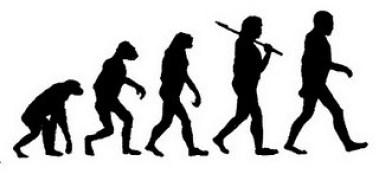Evolusi menuju manusia