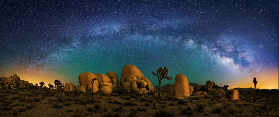 Joshua Tree and Milky Way Panorama by Wayne Pinkston