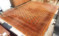 ROOM SIZE BOKHARA CARPET