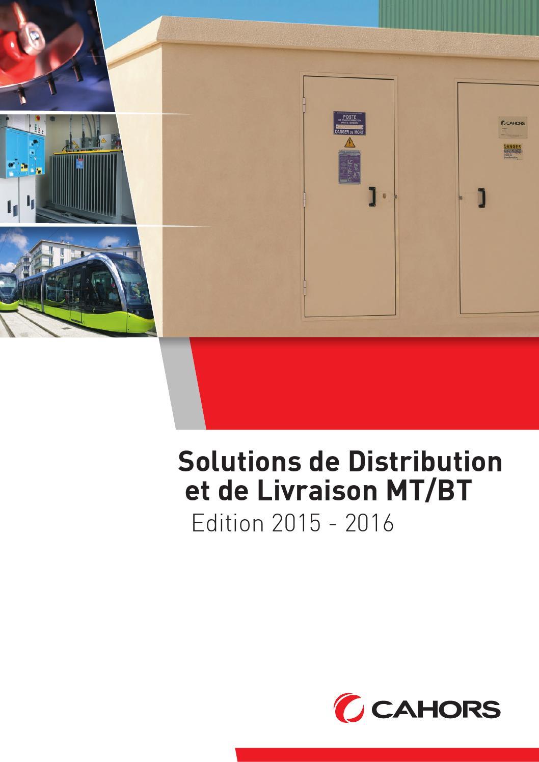 ISSUU Solutions De Distribution Et De Livraison MTBT