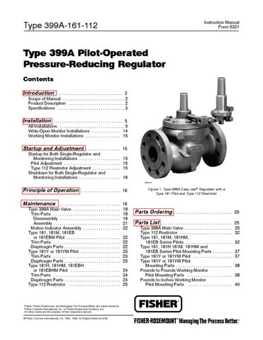 399A-161 Pilot Instruction Manual by RMC Process Controls