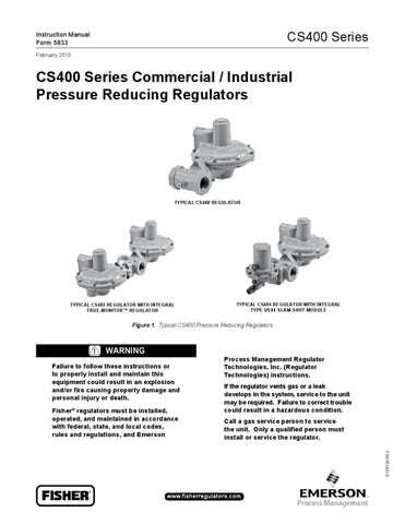 CS400 Instruction Manual by RMC Process Controls