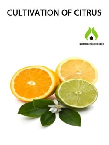 citrus by Kisan Forum Pvt. Ltd. - Issuu