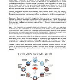 key of a mushroom diagram [ 1060 x 1500 Pixel ]