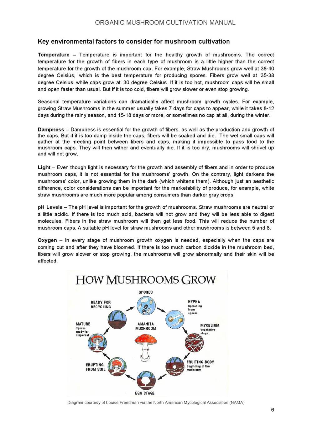 medium resolution of key of a mushroom diagram