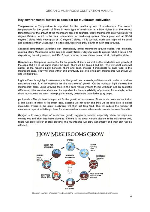 small resolution of key of a mushroom diagram