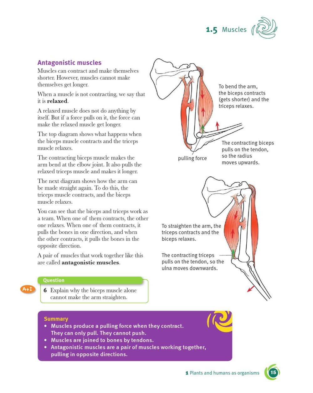 medium resolution of cambridge checkpoint science coursebook 7 by cambridge university press education issuu