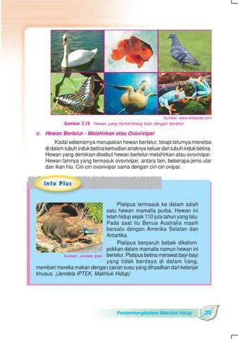 Hewan Bertelur Dan Melahirkan : hewan, bertelur, melahirkan, Kelas, Pengetahuan, Sulistyanto, Herawati, Issuu