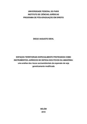 Dissertação - Diego Augusto Diehl by Diego Diehl - issuu