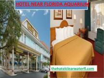 Hotel Florida Aquarium Jameswatsun - Issuu