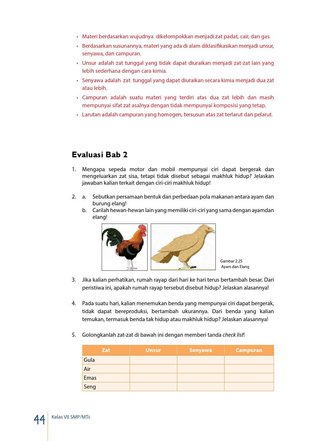 Sebutkan Persamaan Bentuk Dan Perbedaan Pola Makan Antara Ayam Dan Burung Elang : sebutkan, persamaan, bentuk, perbedaan, makan, antara, burung, elang, Kelas, Siswa, Mandalahurip, Issuu