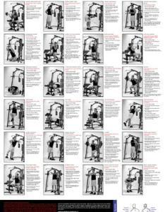 Marcy mp smith machine  bench exercise guide also by fitnessdigital rh issuu