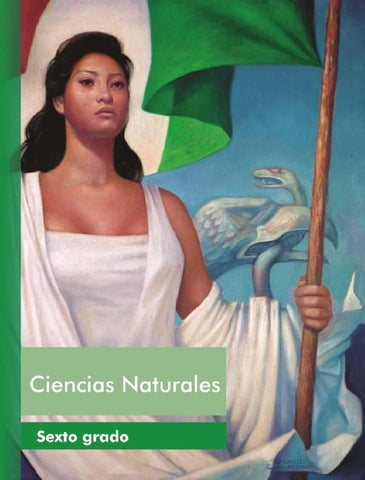 Ciencias Naturales 6to Grado 2015 2016 By Admin MX Issuu