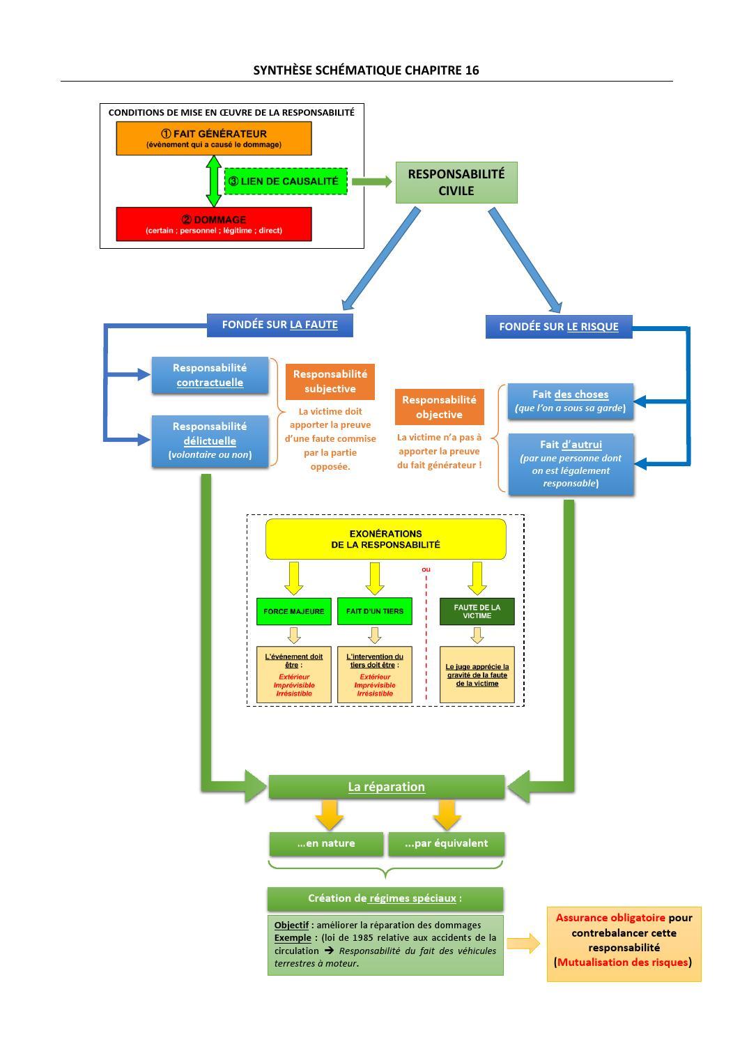 Responsabilité Du Fait D Autrui : responsabilité, autrui, Schéma, Synthèse, Droit, Romain, Gillet, Issuu