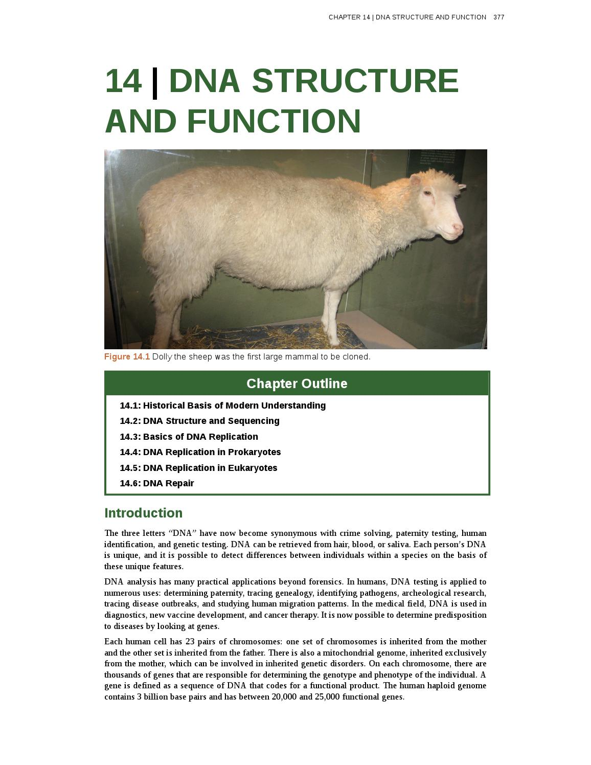 dolly the sheep cloning diagram 1985 ford ranger wiring reading for chapter 14 downloadable pdf by mattpearcy