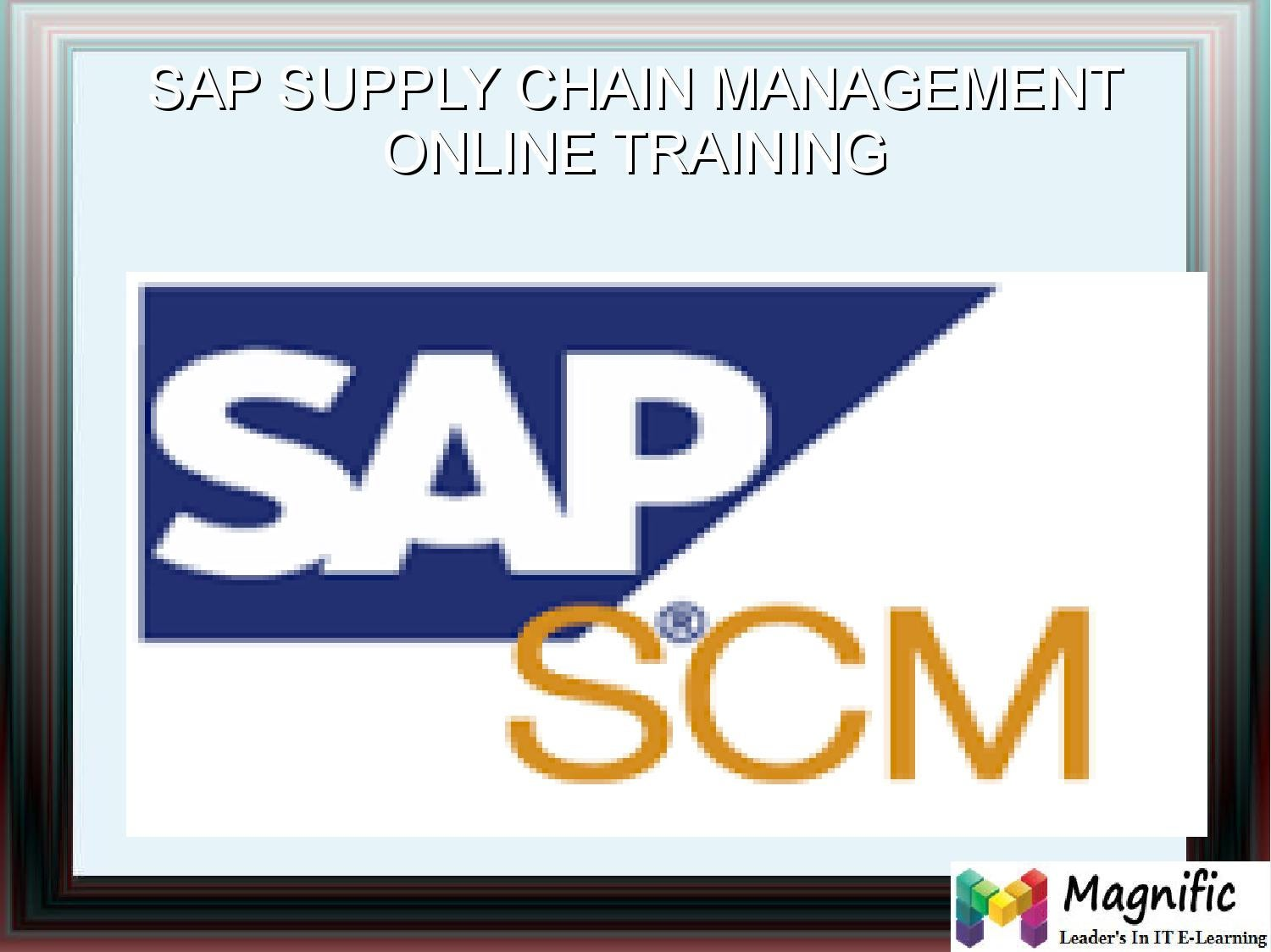 hight resolution of sap scm online training in south africa