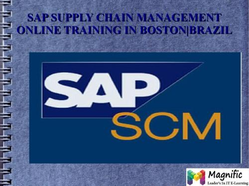 small resolution of sap scm
