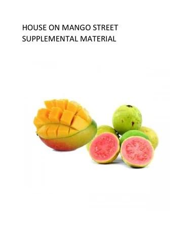 House on mango street supplemental material by DeMottIssuu  Issuu