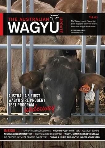 Australianwagyuupdate vol 63 by Australian Wagyu Association - issuu