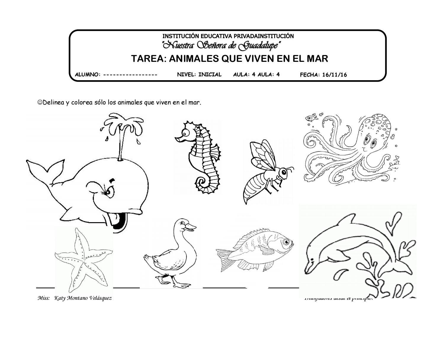 Onomatopeyas De Animales Para Colorear