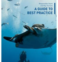 responsible shark ray tourism a guide to best practice by project aware issuu [ 1059 x 1497 Pixel ]