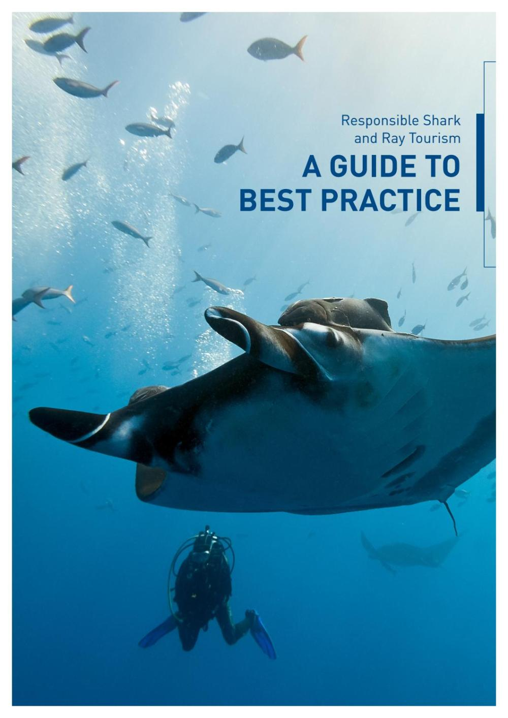 medium resolution of responsible shark ray tourism a guide to best practice by project aware issuu