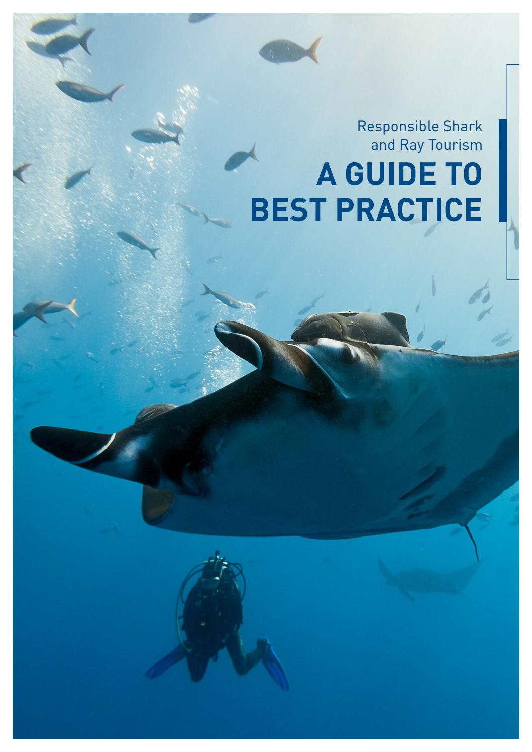 hight resolution of responsible shark ray tourism a guide to best practice by project aware issuu
