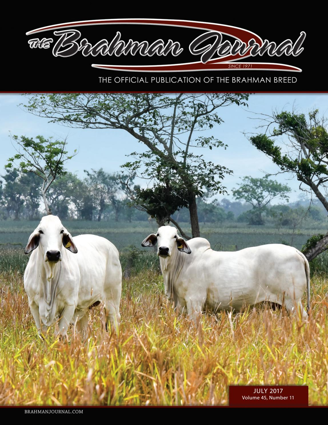 The Brahman Journal  July 2017 by Caballo Rojo Publishing