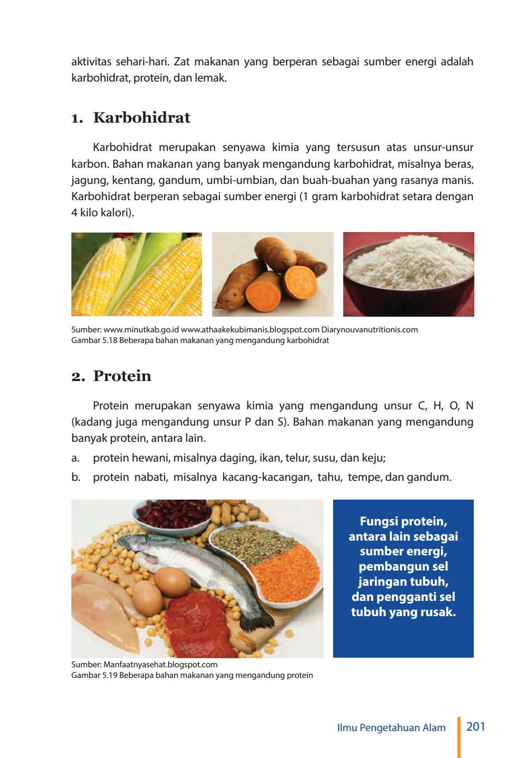 Makanan Yang Mengandung Protein Nabati : makanan, mengandung, protein, nabati, Kelas, Pengetahuan, Siswa, Issuu
