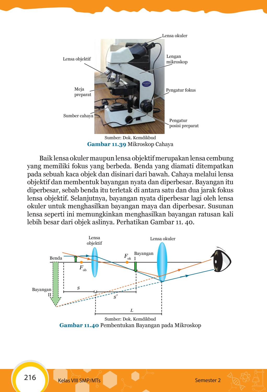 Pembentukan Bayangan Pada Mikroskop : pembentukan, bayangan, mikroskop, Kelas, Pengetahuan, Siswa, Issuu