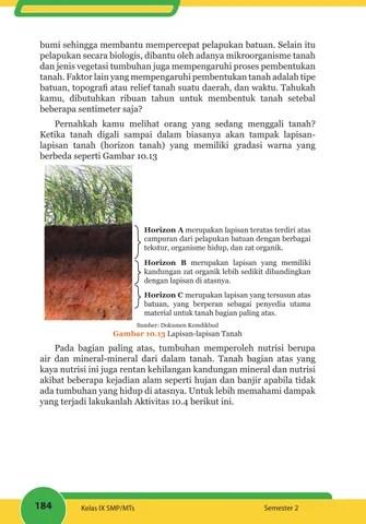 Faktor Yang Mempengaruhi Pembentukan Tanah : faktor, mempengaruhi, pembentukan, tanah, Faktor, Mempengaruhi, Proses, Pembentukan, Tanah, Seputar, Bentuk