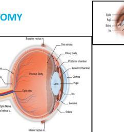anatomy of the eye human eye anatomy aakash eye hospital [ 1500 x 1125 Pixel ]