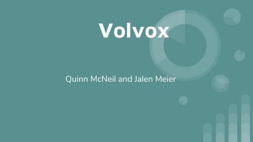 small resolution of protist slide quinn mcneil and jalen meier